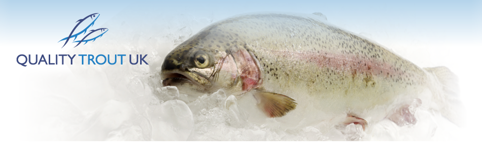 Quality Trout UK